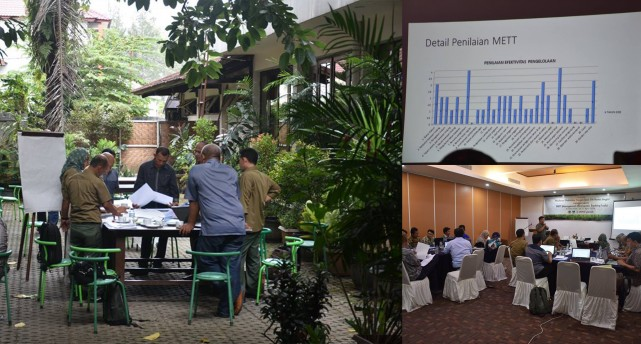 "The Workshop on ""Report Preparation and Follow Up Plan Following METT Assessment of Singkil Wildlife Reserve"""