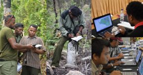 Promoting SMART as a Database Management System in Cyclops Nature Reserve, Papua