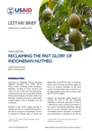 LESTARI Brief 08: Reclaiming the Past Glory of Indonesian Nutmeg