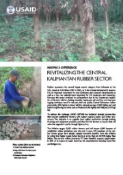 Making A Difference – Revitalizing the Central Kalimantan Rubber Sector
