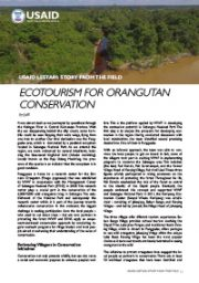 Story from the Field – Ecotourism for Orang Utan Conservation