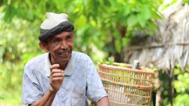The Lost Smiles of Nutmeg Farmers (Community Video)