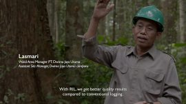 Sustainable Logging Practices for Forest Conservation
